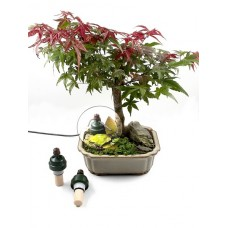 Blumat for Bonsai